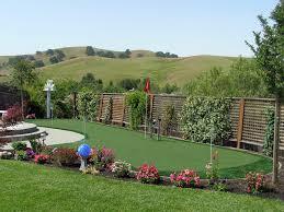 Synthetic Grass Backyard Artificial Grass Carpet Lake Havasu City Arizona Putting Green