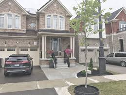 100 basement apartments brampton 1 bedroom basement for