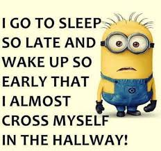 Funny Minion Memes - top 40 funny minions memes quoteshumor com