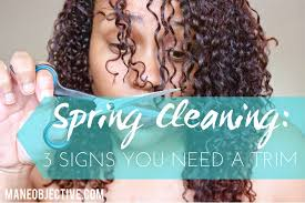 Springcleaning The Mane Objective Spring Cleaning 3 Signs You Need A Trim This