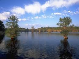 Louisiana lakes images Chicot state park louisiana office of state parks jpg