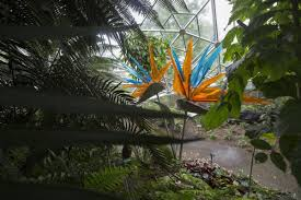 The Missouri Botanical Garden Flora New Glass Exhibit Comes To Missouri Botanical