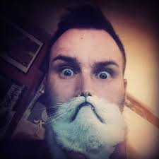 Cat Beard Meme - the 25 most epic cat beards of all time i didn t even know this was