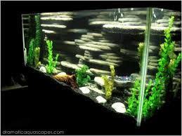 get inspired with these 9 diy aquarium backgrounds aquarium