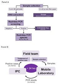 an innovative tool for moving malaria pcr detection of parasite