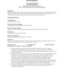 T Sql Resume Download Sql Resume Haadyaooverbayresort Com