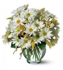 elkton florist flower designs fair hill florist elkton md