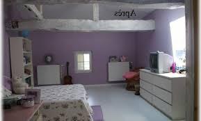 chambre d agriculture dijon décoration chambre d ado fille 15 ans 18 dijon chambre