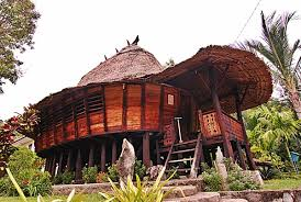 traditional house nias with earthquake resistant the fact of