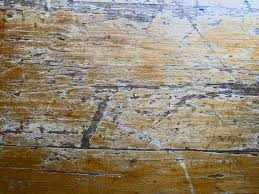 Seamless Wooden Table Texture Wood Texture Images Public Domain Pictures Page 1