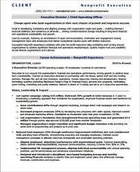 executive director resume sle executive director resume 7 exles in pdf