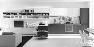 Red Kitchen White Cabinets White Kitchen Cabinets Modern White Kitchen Island Design Ideas