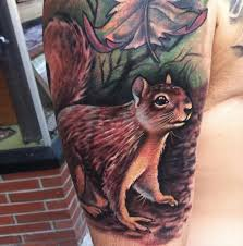 squirrel tattoo images u0026 designs
