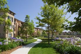 torrey ridge apartments in carmel valley for rent
