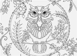coloring page for adults owl the best shoot adult coloring owl top yonjamedia com