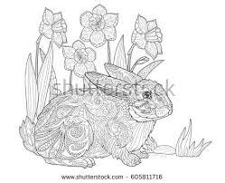 rabbit spring flowers grass stock vector 605811716