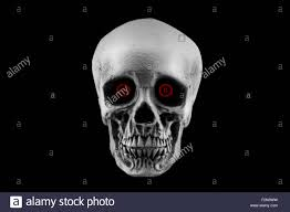 halloween red background a halloween skull decoration with red eyes isolated on a black