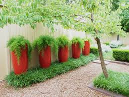 fern planters landscape contemporary with trees brown garden