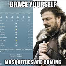 Summer Is Coming Meme - brace yourself mosquitoes are coming dc summer is coming meme