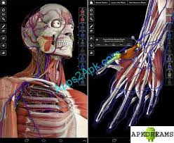 essential anatomy 3 apk essential anatomy 3 v1 1 0 apk downloader of android apps and