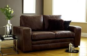 Faux Leather Sofa Sleeper Buy Leather Sofa Bed To Save Space And Money Pickndecor
