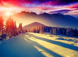 sunsets nature pretty trees glow colorful landscape winter