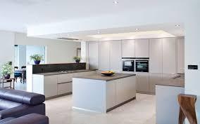 grey matt kitchen 3 jpg