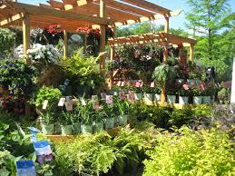 willoway nurseries inc the midwest u0027s premier wholesale grower