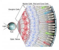 eye pain from light light sensitivity and ocular migraines axon optics