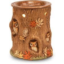 62 best smellin u0027 owl good images on pinterest owls owl and