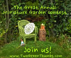 august 2013 the mini garden guru from twogreenthumbs com