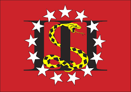 Us Colonial Flag The Snake On The Flag Three Percent Plus One