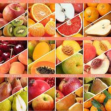 monthly fruit club 6 months of harvest deluxe fruit club with free weekday delivery
