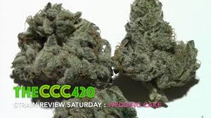 wedding cake kush theccc420 jungle boys wedding cake dude grows