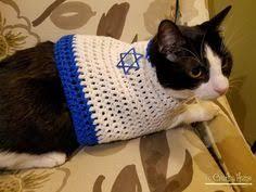 cat menorah sam cat hat hats for cats 4th of july cat hat clothes pets