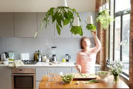 kitchen gardening ideas how to make mini kitchen garden with vegetables and herbs