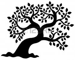 White Oak Tree Drawing Oak Tree Silhouette Logo Clipart Panda Free Clipart Images