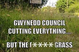 Grass Memes - here s what you have to say about gwynedd council s grass cutting