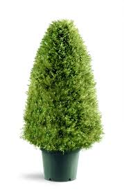 best in artificial trees helpful customer reviews