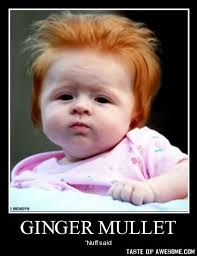 Funny Ginger Memes - 30 very funny mullet meme photos and images of all the time