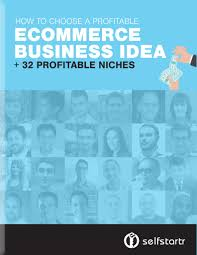 ecommerce business ideas choosing a profitable niche