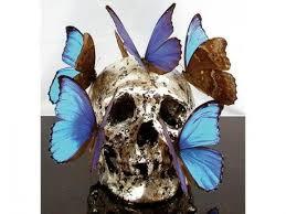 philippe pasqua skulls the