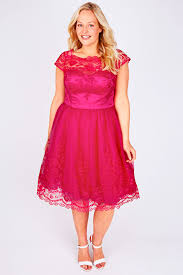 chi chi london pink sweetheart embroidered party dress plus