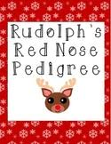rudolph u0027s red nose pedigree worksheet this download contains a