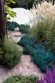 Good Modern Garden Design Plants 63 For Home Design Ideas With