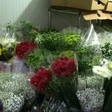 wholesale flowers miami ecuamia flowers get quote 20 photos wholesale stores 1500