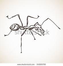 ant silhouette vector stock vector 582244153 shutterstock