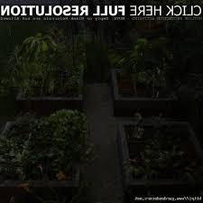 backyard vegetable garden design pictures bonsplans us