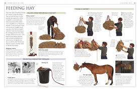 complete horse care manual colin vogel 0690472071600 amazon com