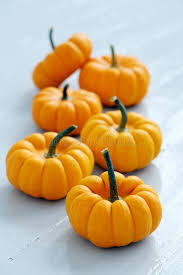 Small Pumpkins Lots Of Small Pumpkins Stock Photo Image 45818110